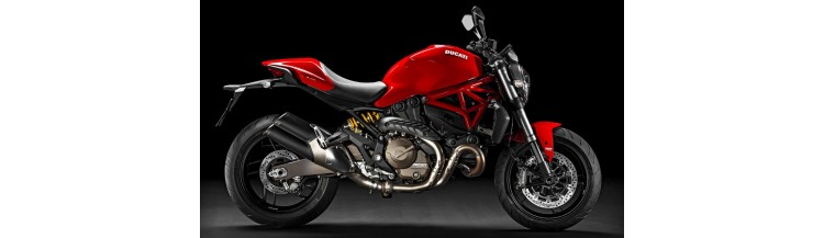 Moto Roadster Ducati Monster 821